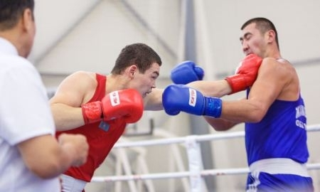 Тренер и боксёр, избившие рефери на Кубке КФБ, будут дисквалифицированы