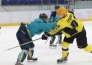 Отчет о матче ВХЛ «Торпедо» — «Сарыарка» 1:2 Б