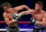 Бойцы MMA прокомментировали бой Головкина и Альвареса