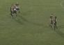 Видео матча Премьер-Лиги «Шахтер» — «Окжетпес» 2:1