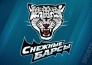 «Снежные Барсы» одержали победу над «Спутником» в матче МХЛ