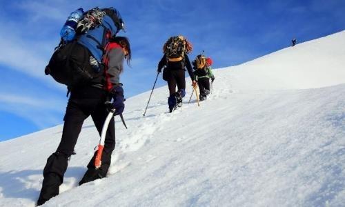 Альпинисты покорили самые высокие горные точки Жетысу