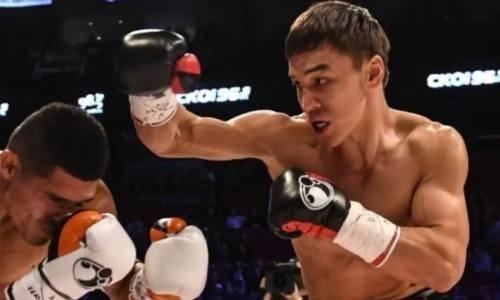 Казахстанского нокаутера лишили титульного боя