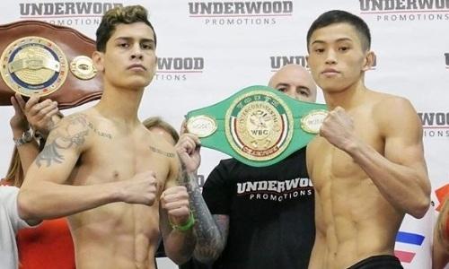 «Ультраконкурентный бой». Назван ключевой фактор в победе казахстанского нокаутера в титульном поединке