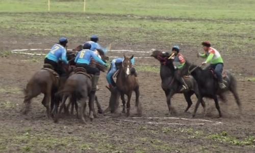Международный турнир по конным видам спорта стартовал в Алматинской области