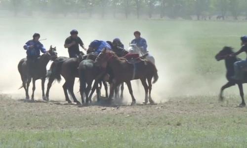 Республиканский турнир по конным видам спорта прошел в Талдыкоргане