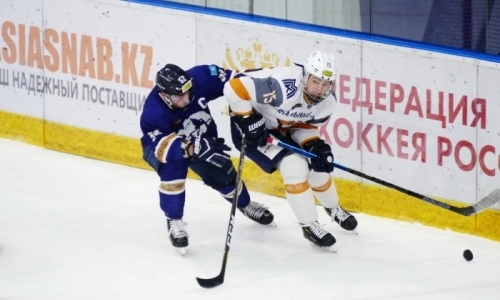 Букмекеры определили победителя матча «Алтай» — «Стальные Лисы»