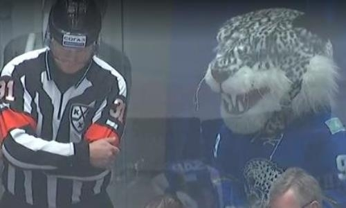 Забавный Барсик. КХЛ отметила отмененный гол «Барыса» в матче с «Металлургом»