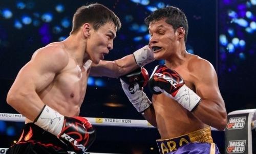 Видео боя с нокдауном и нокаутом. Как казахстанец Джукембаев мощными ударами в челюсть «убивал» мексиканца