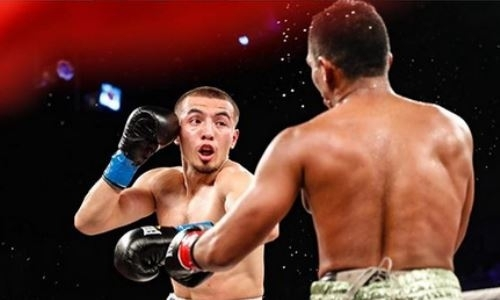 Пообещавший шокировать мир казахстанский боксер подерется с аргентинцем с 13 победами