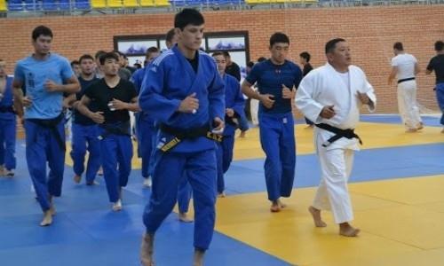 Сборная Казахстана по дзюдо проведет два тренировочных сбора подряд