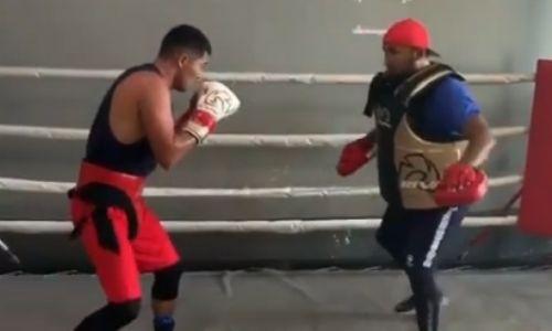 Не знающий поражений казахстанский боксер продемонстрировал реакцию и скорость ударов. Видео