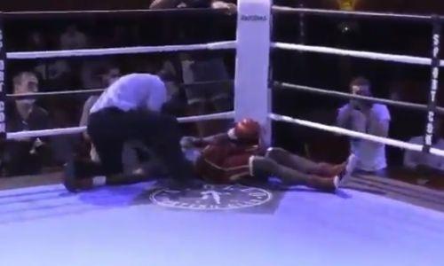 В боксе появился новый претендент на лучший нокаут года. Видео