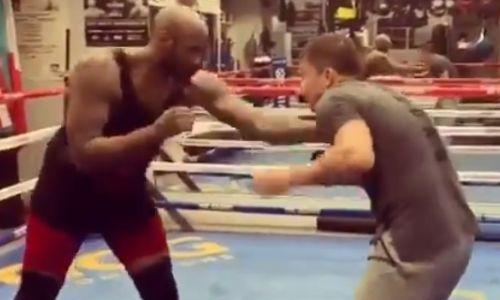 Головкин оттаскал по рингу 130-килограммового супертяжа и заставил его просить пощады. Видео