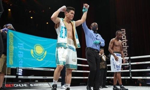 «Самое впечатляющее». Данияра Елеусинова похвалили за яркую победу нокаутом в титульном бою