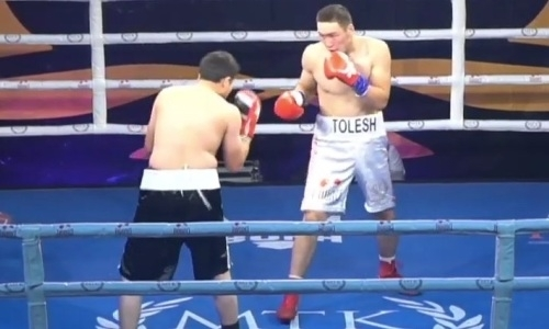 Казахстанский боксер заставил сдаться узбека с 22 победами в профи