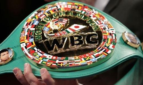 В WBC назначили первый бой в новой весовой категории