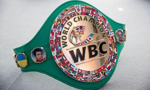 WBC назвал лучшего боксера 2020 года