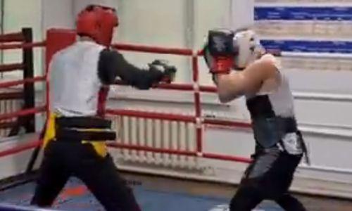 В Сети появилось видео спарринга казахстанского боксера перед боем за титул WBO