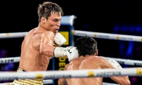 «Расправит крылья». От непобежденного казахстанского боксера ждут прорыва в США