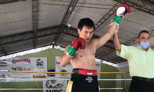 Казахстанский боксер взлетел в мировом рейтинге после четвертой победы нокаутом кряду