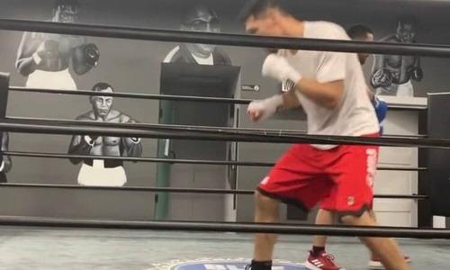 Алимханулы показал техничный бой с тенью перед боем с бывшим чемпионом мира