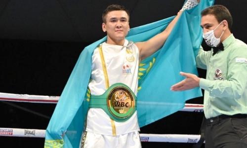 «Продолжает путь к титулу чемпиона мира». WBC восхитился победой «сенсационного» боксера из Казахстана