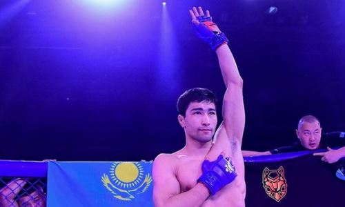 Прямая трансляция турнира AMC Fight Nights 103 с участием казахстанского бойца