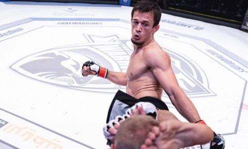 Брат Нурмагомедова жестким нокаутом в первом раунде победил на турнире Bellator. Видео