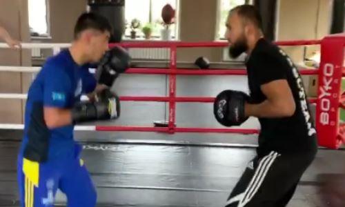 Казахстанский боксер показал скорость комбинаций перед возвращением на ринг спустя четыре года. Видео