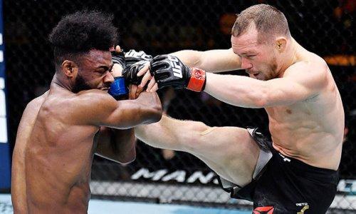 В UFC официально подтвердили реванш Петр Ян — Стерлинг