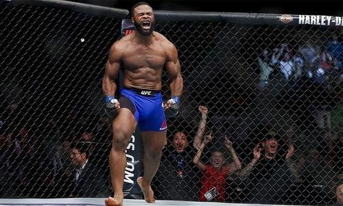 «Я люблю Джейка». Экс-чемпиону UFC придется сделать унизительную татуировку ради реванша с блогером. Фото