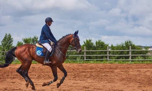 Сборная Казахстана по конному спорту проводит УТС в Алматинской области