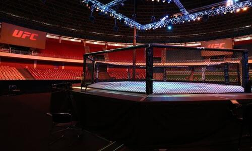 В MMA готовится запуск революционного промоушна. Прообразом выступили НХЛ, НБА и НФЛ