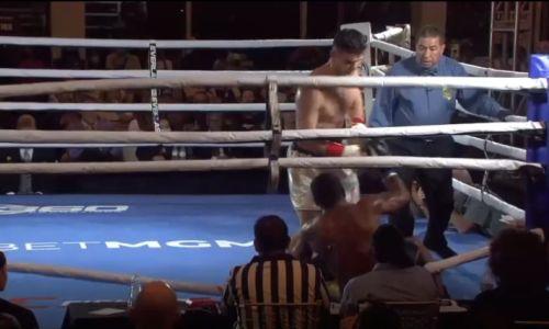 Видео полного боя Али Ахмедова с досрочным поражением нокаутера «Пантеры»