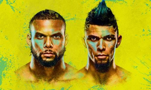 Прямая трансляция турнира UFC Fight Night 193 с главным боем Сантос — Уокер