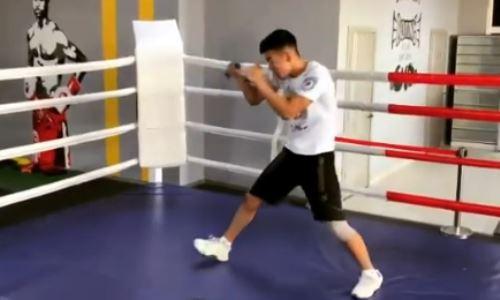 В Сети появилось видео с тренировки молодого чемпиона WBC и WBO из Казахстана