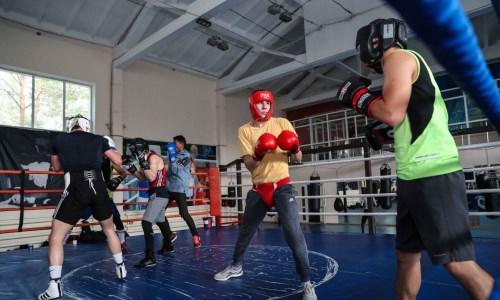 Казахстанские боксеры готовятся к ЧМ в Туркестанской области